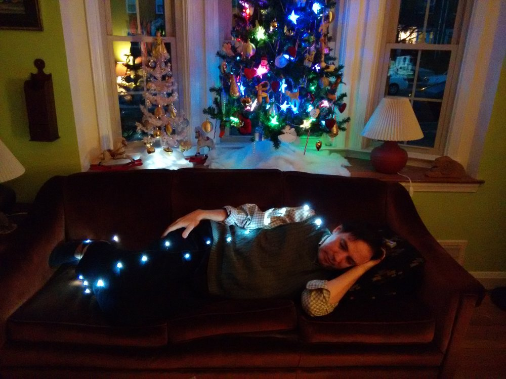 Jay's Winter Nap