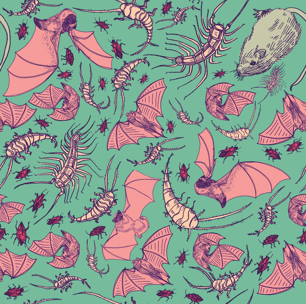 crawlie-pattern_small.jpg