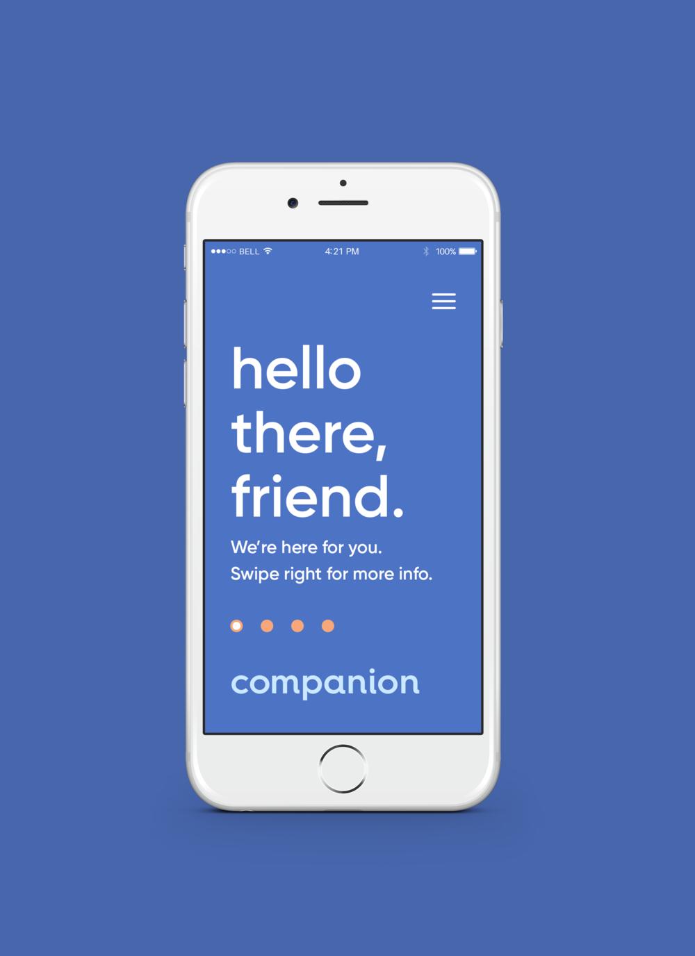 Companion_Website.png