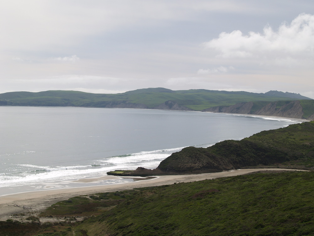 Take of all living marine resources is prohibited.  Click here for more information about Point Reyes State Marine Reserve.