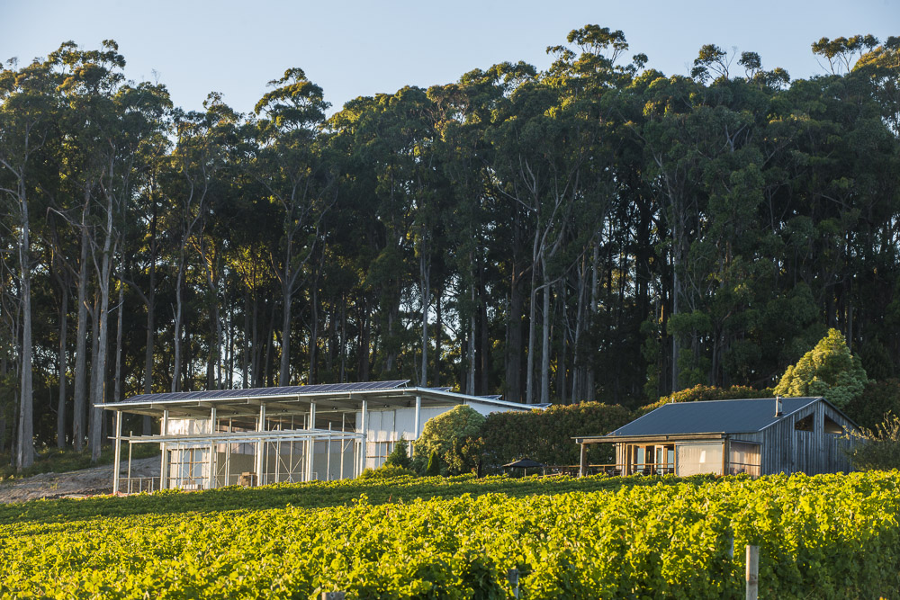 Our winery & cellar door