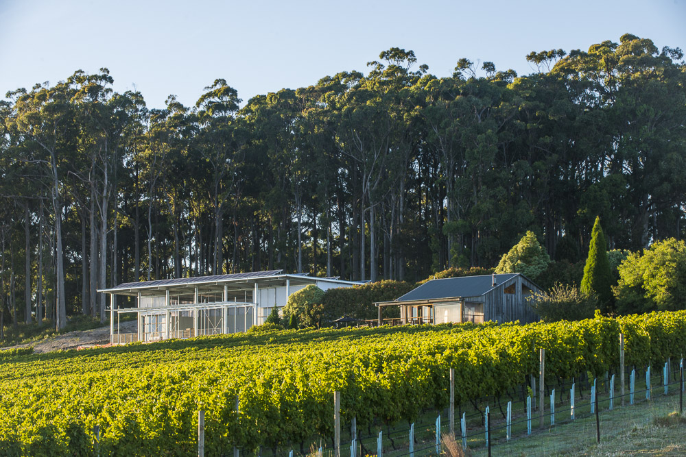 Our winery and cellar door