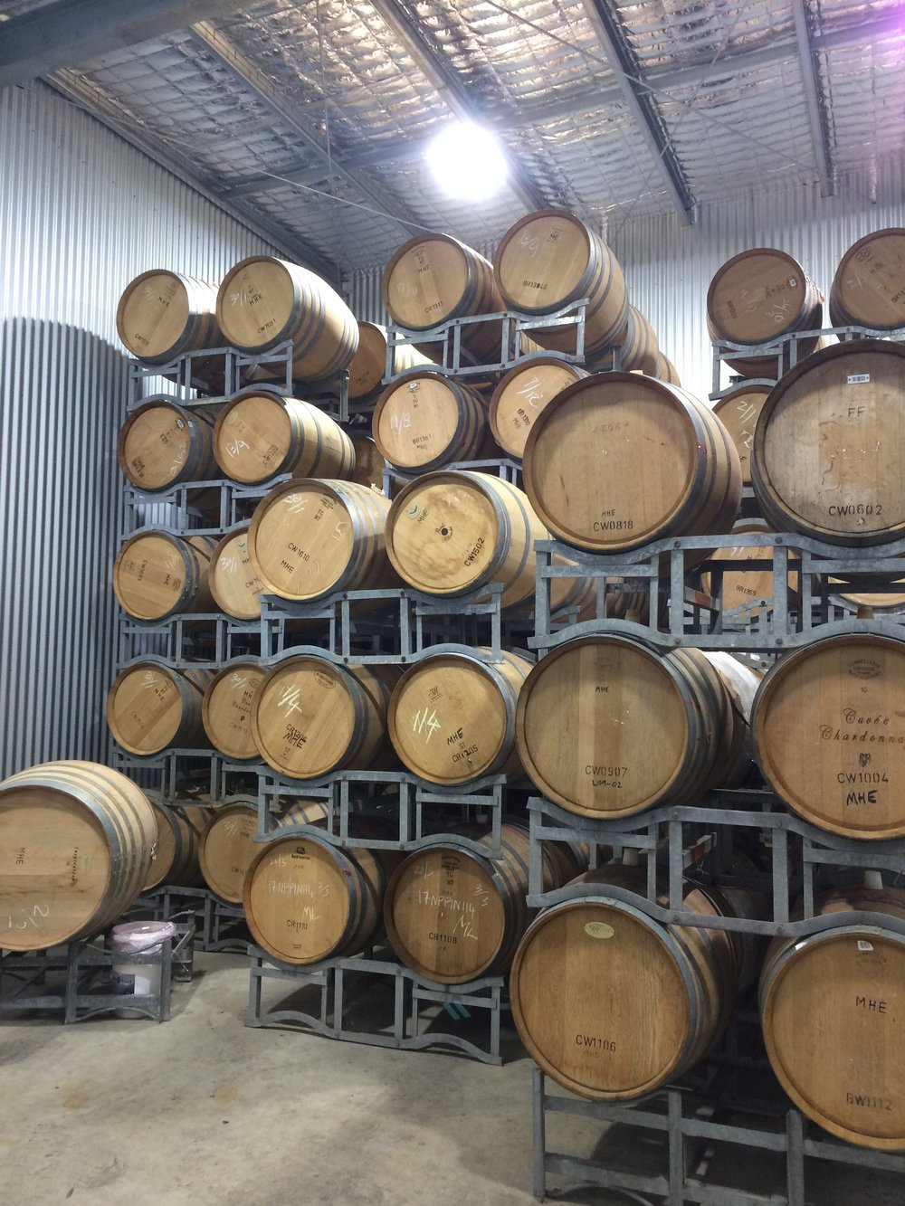 Empty French Oak barrels waiting to be filled in the barrel room.