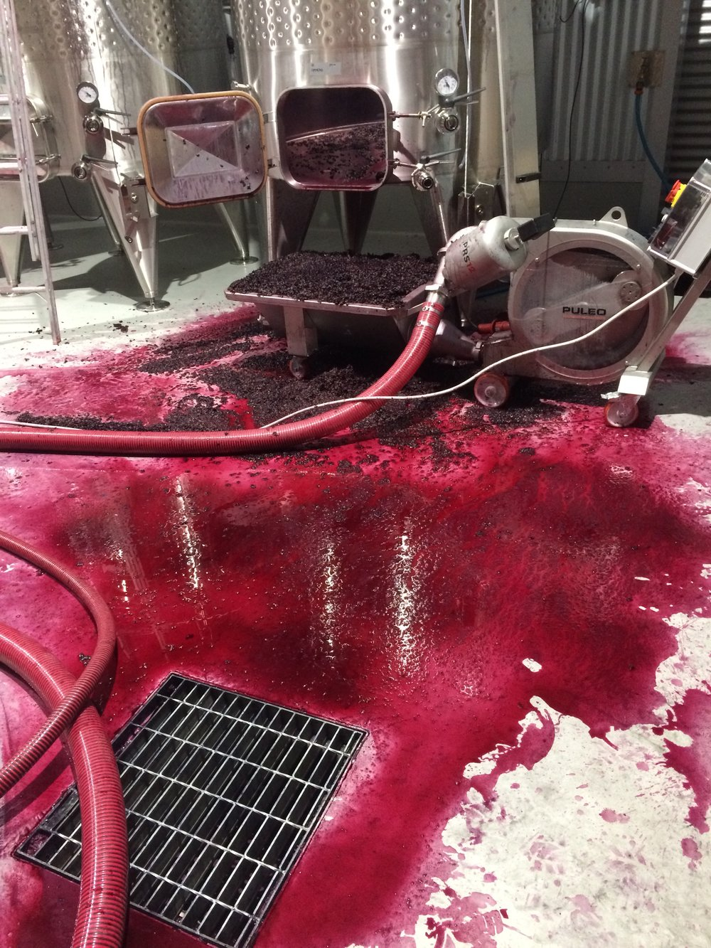 Sometimes things go wrong. All the winery equipment had performed really well, right up until the last day of processing when the pump stopped working. Oh dear, more mess to clean up.