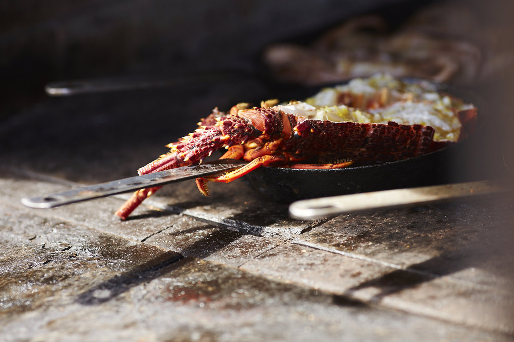 Crayfish sourced from the North West coast of Tasmania