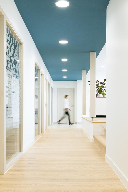 Bureaux plateformes - Construction d'une office notariale.Quant l'architecture devient un outil de management et quant le traitement de l'espace devient une ressource dans la gestion de travail..