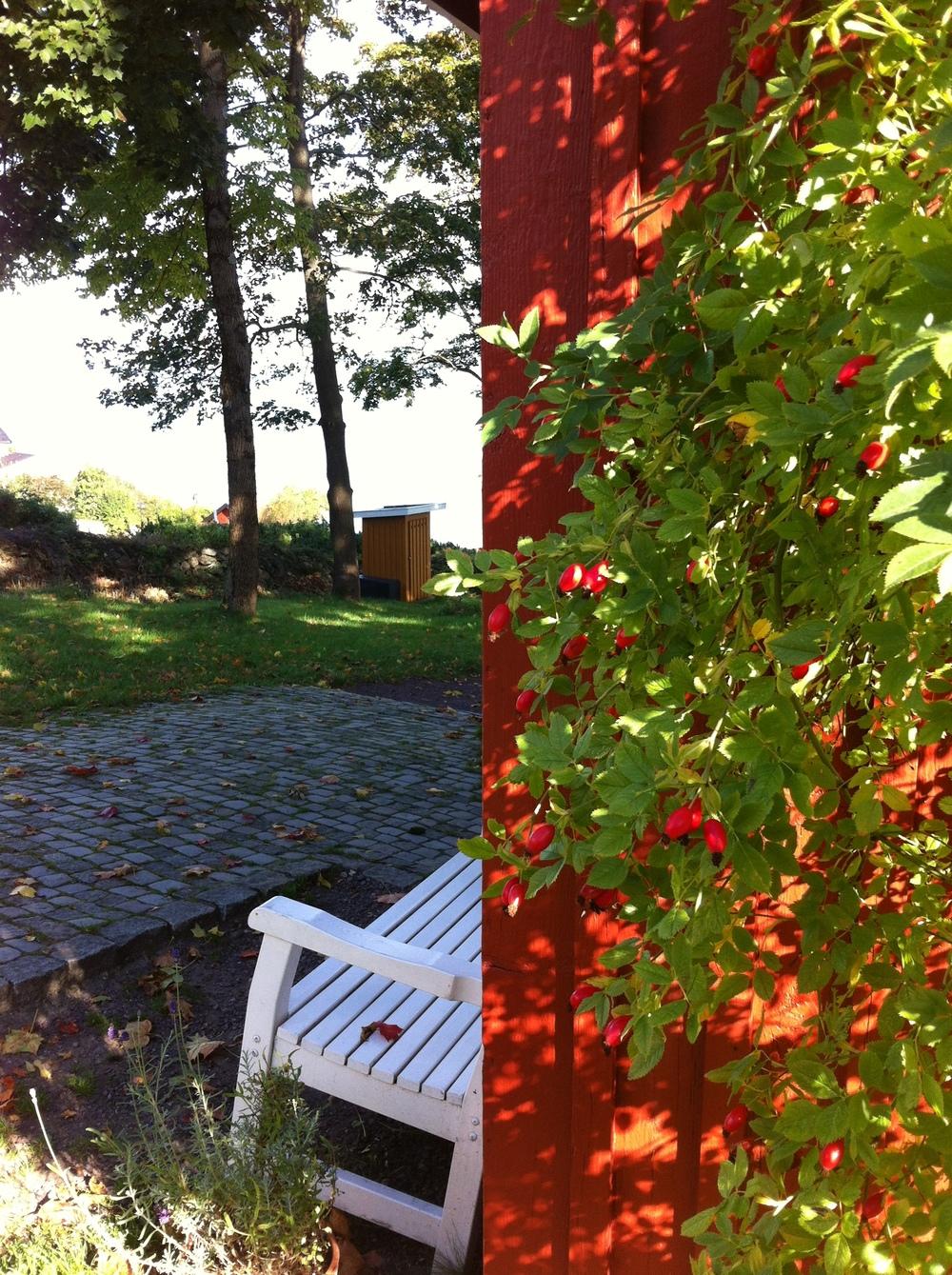 En høstdag i Munchs hage.