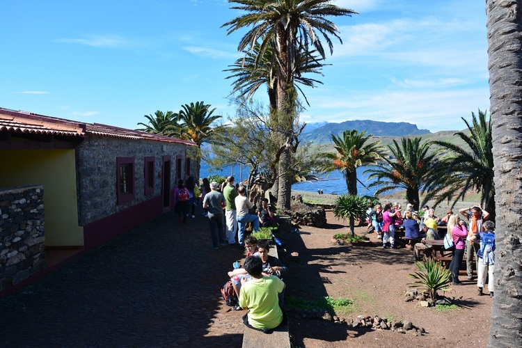 Green Key Hotels in Madeira support reforestation initiative
