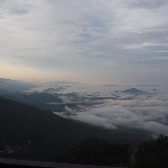 North-Kerala, leaving coastal Malabar region in the mist, moving on to Wayanad district uphill. #visitindia #adyabio #beautifulindia #keralatourism #organicfoodindia