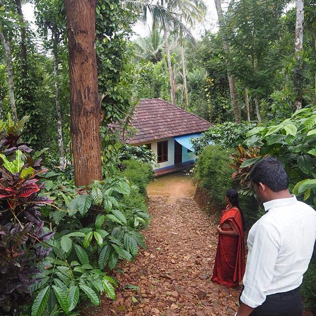 What's down there? Organic farm land in Wayanad is amazing in its abundancy and colours.The family in this house specializes in pepper, coconut and robusta coffee. We're also mapping homestay opportunities! #biodiversity #wayanadtrip #organicfarming #adyabio #homestaykerala @keralatourism