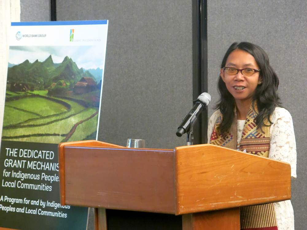 Mina Setra, member of Indonesia's DGM National Steering Committee, gave remarks at the launch event.  Setra works with Aliansi Masyarakat Adat Nusantara (AMAN) in Indonesia.