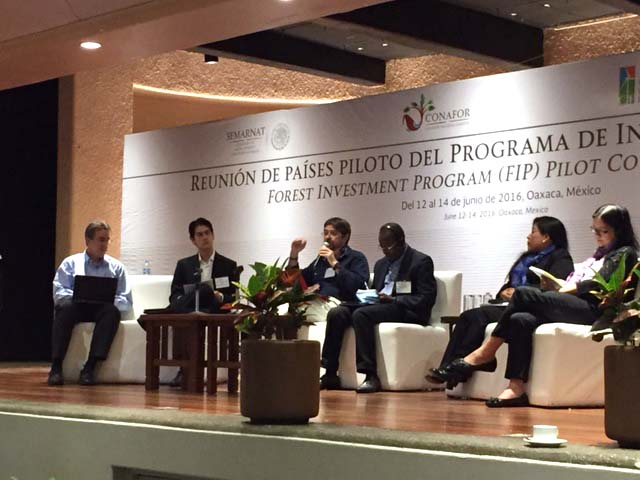 Vince McElhinny (left), moderated a panel on the DGM with, from left: Marco Aurelio dos Santor (FIP Focal Point, Brazil), Manuel Aldrete (DGM Global Steering Committee, Mexico), Ibrahim Lankoande (FIP Focal Point, Burkina Faso), Marilen Puguio Arturo, (DGM Global Steering Committee, Peru), Grace Balawag (Co-chair of the Global Steering Committee for the DGM, Philippines).