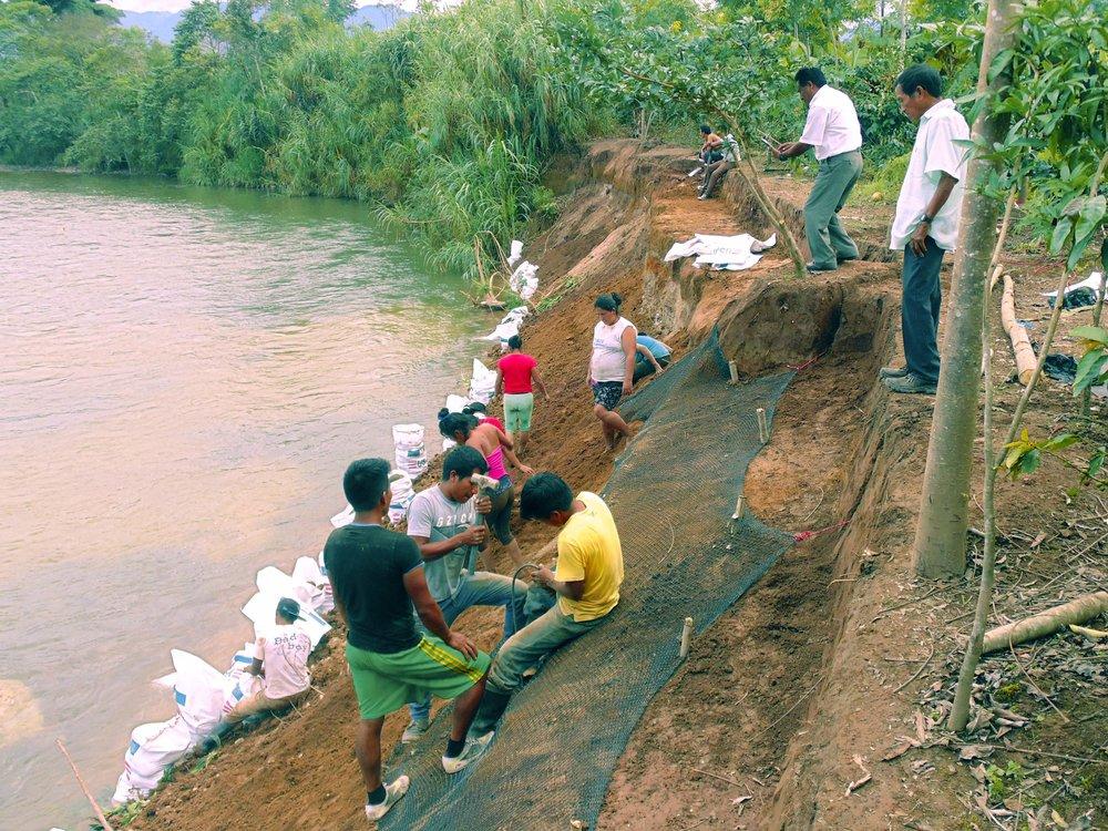 Restauración Ribereña © Edward Isla Awajun community working to restore their river.