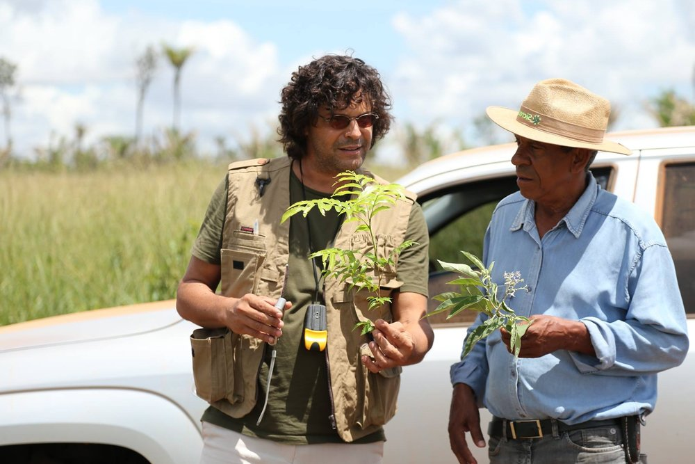 Projet du Mécanisme spécial de dons en faveur des peuples autochtones, des communautes locales, et des quilombolas du Cerrado - Document de projetFinancement : 6,5 millions USDApprobation du Programme d'investissement forestier : Juin 2015Approbation de la Banque mondiale : Mars 2015Mise en œuvre : Avril 2015 – Decembre 2020Comité de pilotage national : ListeAgence d'exécution nationale : Centro de Agricultura Alternativa do Norte de Minas (CAA/NM) Site web   Fonds d'investissements climatiques   Banque mondialeFacebook   Twitter   Instagram   YouTube