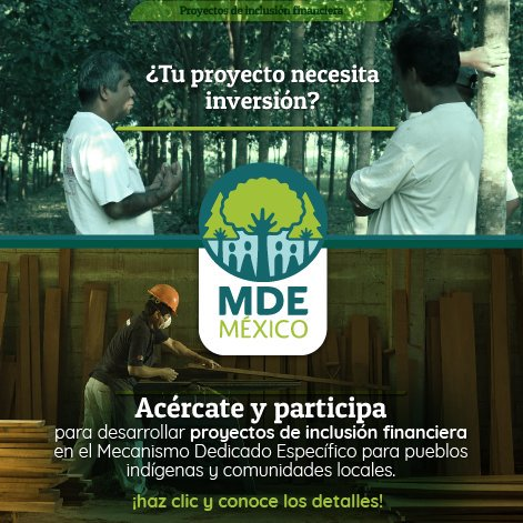 mx_financialinclusion.jpg