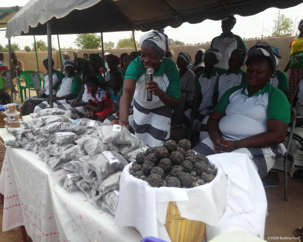Projeto de Apoio às Comunidades Florestais Locais - Documento do ProjetoFinanciamento: 4,5 milhões de dólaresAprovação do Programa de Investimento Florestal: Junho de 2015Aprovação do Banco Mundial: Setembro de 2015Implementação: De setembro de 2015 a junho de 2020Comitê Gestor Nacional: ListaAgência Executora Nacional: UICN Burkina FasoFundos de Investimento Climático | Banco MundialFacebook