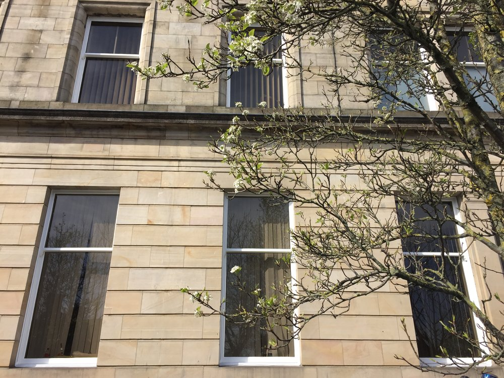 Paisley Side Windows Closeup.JPG