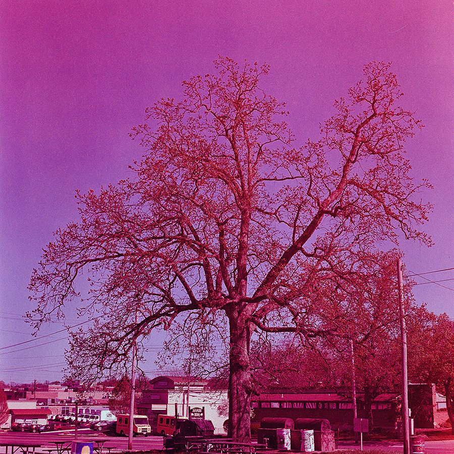 The same shot taken from the opposite direction and the hues completely shifted.  Now there is a really heavy magenta tone.  This was the second to last shot too, so very close to the spool if that has any significance.