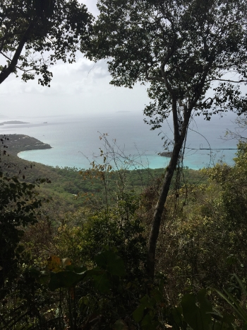 View from Cinnamon Bay Trail