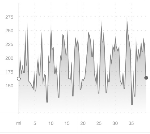 Elevation chart for the 40-miler