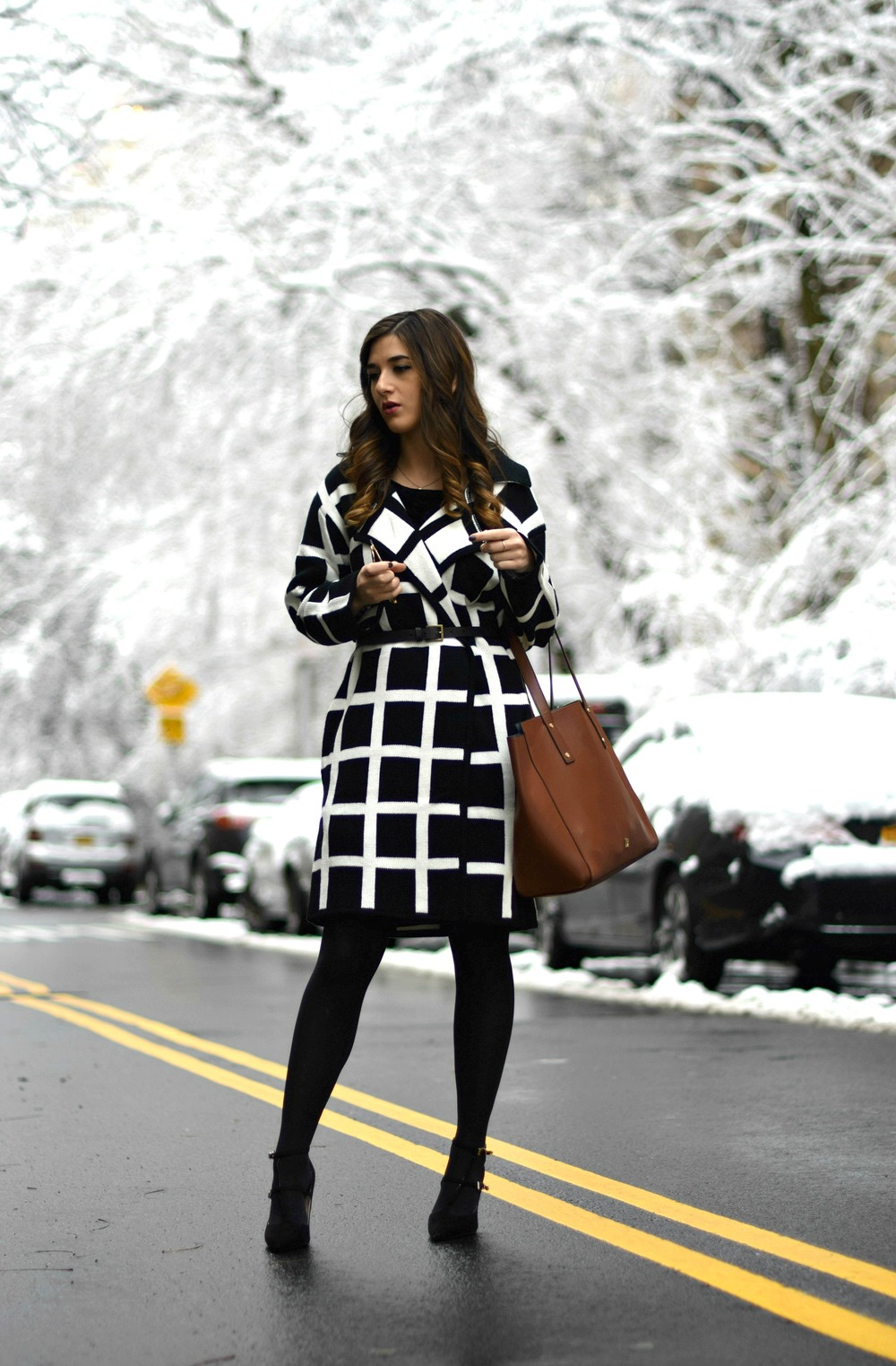 Black and White Windowpane Sweater Trescool Louboutins & Love Fashion Blog Esther Santer NYC Street Blogger Winter Wear Shop Cozy Layers Zara Black Heels Ivanka Trump Soho Tote Bag Velvet Dress Outfit Inspo OOTD Model Hair Photoshoot Beauty Sunglasses.jpg