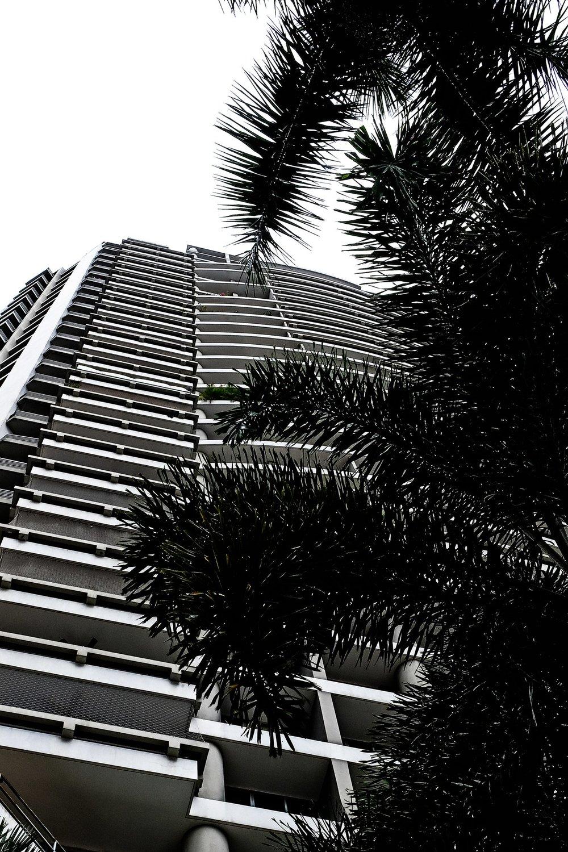 01_buildings.jpg