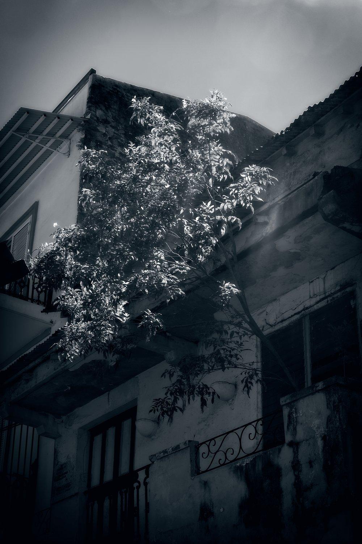 004_Casco_Viejo_B&W_12-11-17.jpg