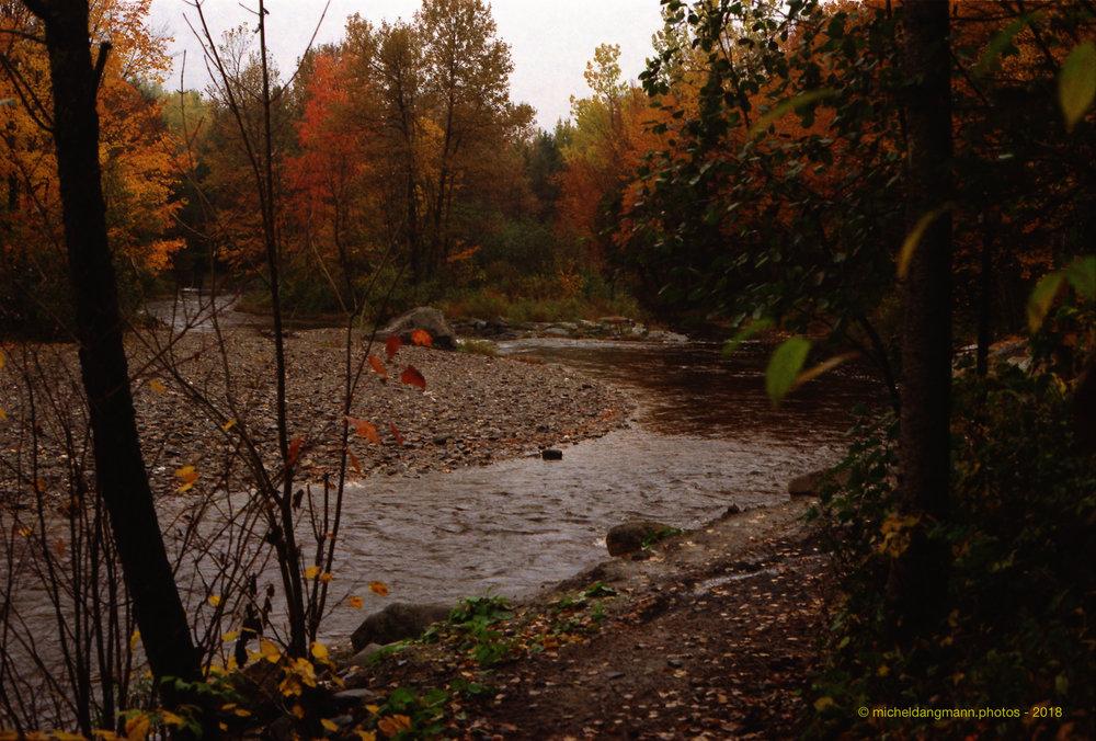 008_Canada_Analog_Pictures_Canon_AE1_Kodak_ISO200_30102018_15-44.jpg