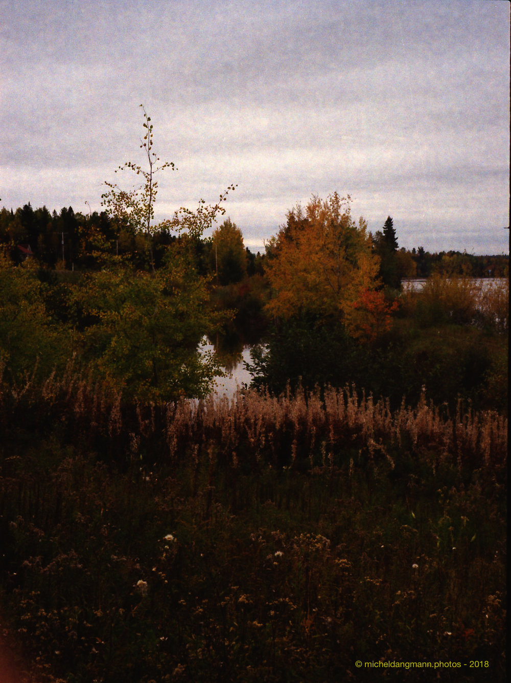 12-Canada_Autumn_Analog_Pictures_October_2018.jpg