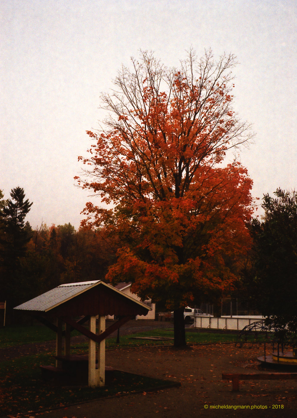 34-Canada_Autumn_Analog_Pictures_October_2018.jpg
