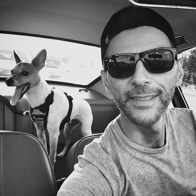 Heading to #DRT on the #912 with my best copilot @jimbo_ebb ! ❤️🐶 #Porsche #porsche912 #912 #germancars #vintageporsche #sunday #southmiami #miami #porschelove #drt #foxterrier #toyfoxterrier #puppy #petsofinstagram #racing #classicporsche #miami #carporn #copilot #luftgekühlt #flatfour #flat4 #aircooled