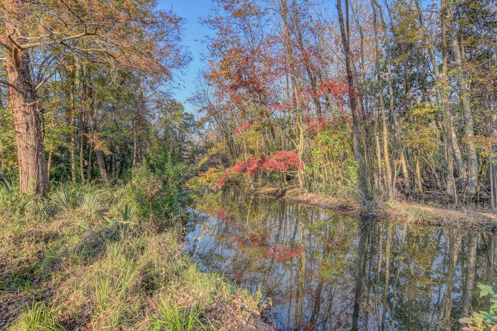406 Woodland Dr Jacksonville-print-053-45-Back Yard-4200x2801-300dpi.jpg