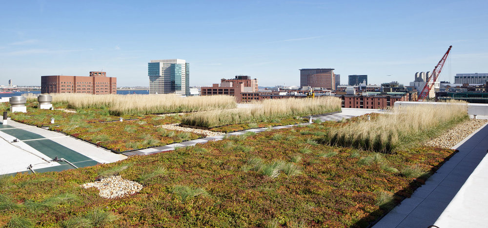 Boston's First LEED Platinum High Rise