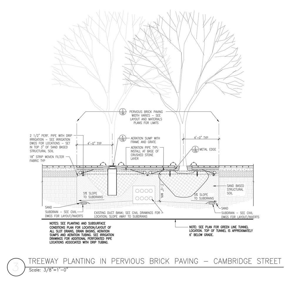 Treeway-Planting-Detail.jpg