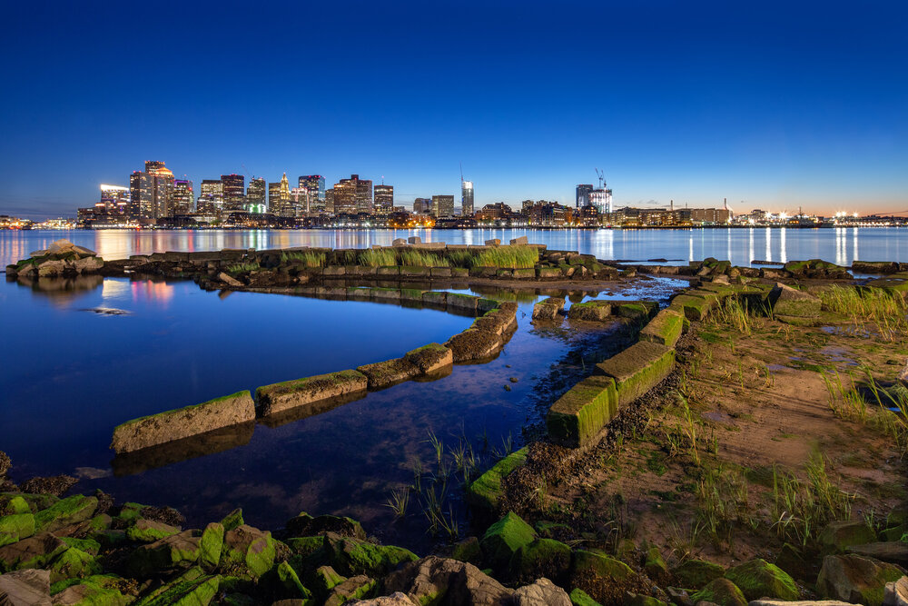 A Living Shoreline Takes Shape in East Boston