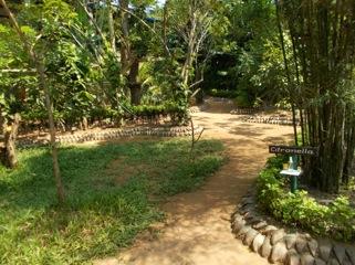 Nice spice garden.jpeg