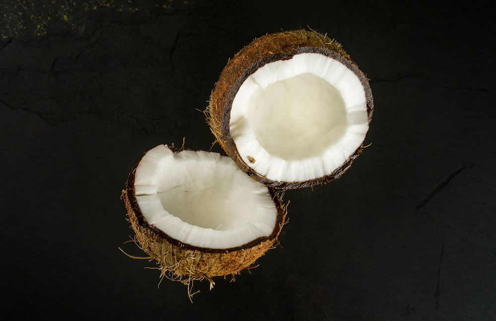 coconut-raw-dog-food.jpg