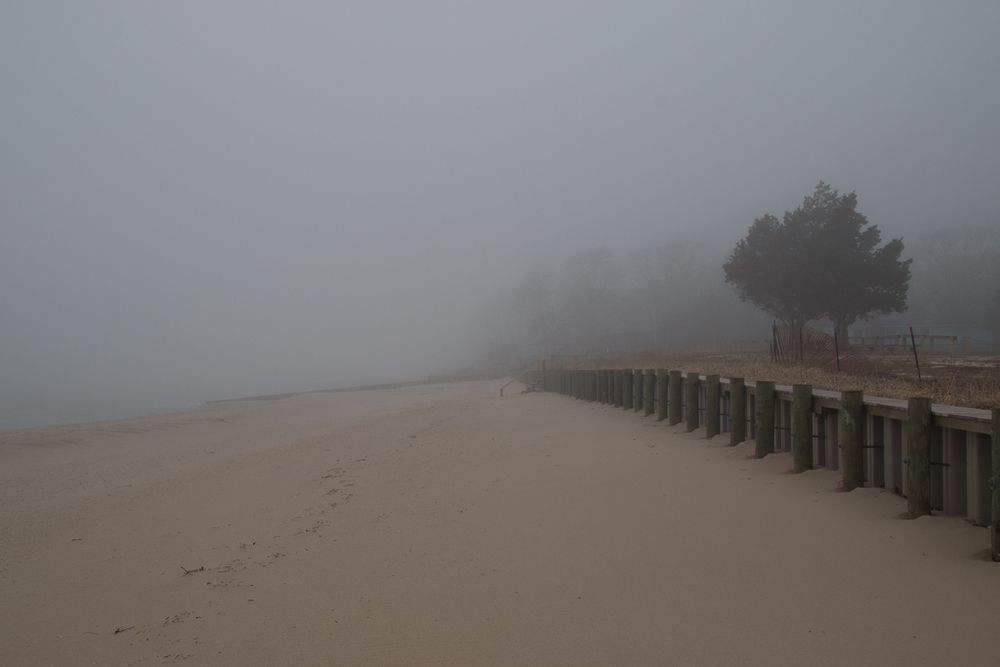 Beach Fog 2