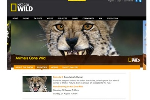 "NATIONAL GEOGRAPHIC WILD: ""ANIMALS GONE WILD"""