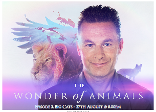 "BBC - ""THE WONDER OF ANIMALS"""