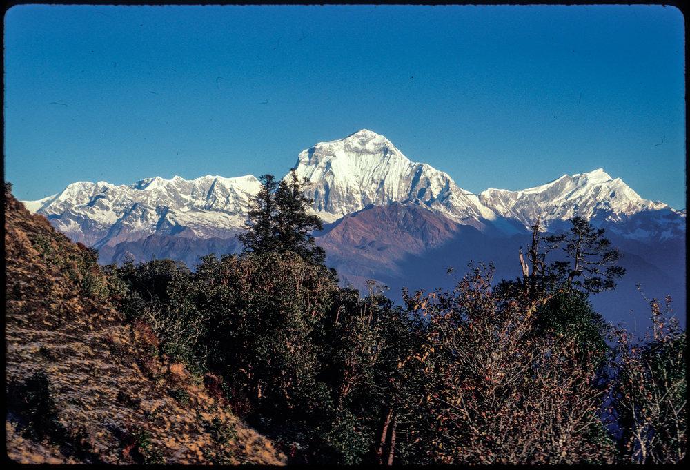 Nepal_--156.jpg