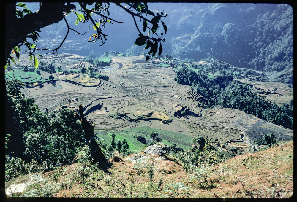 Nepal_--40.jpg