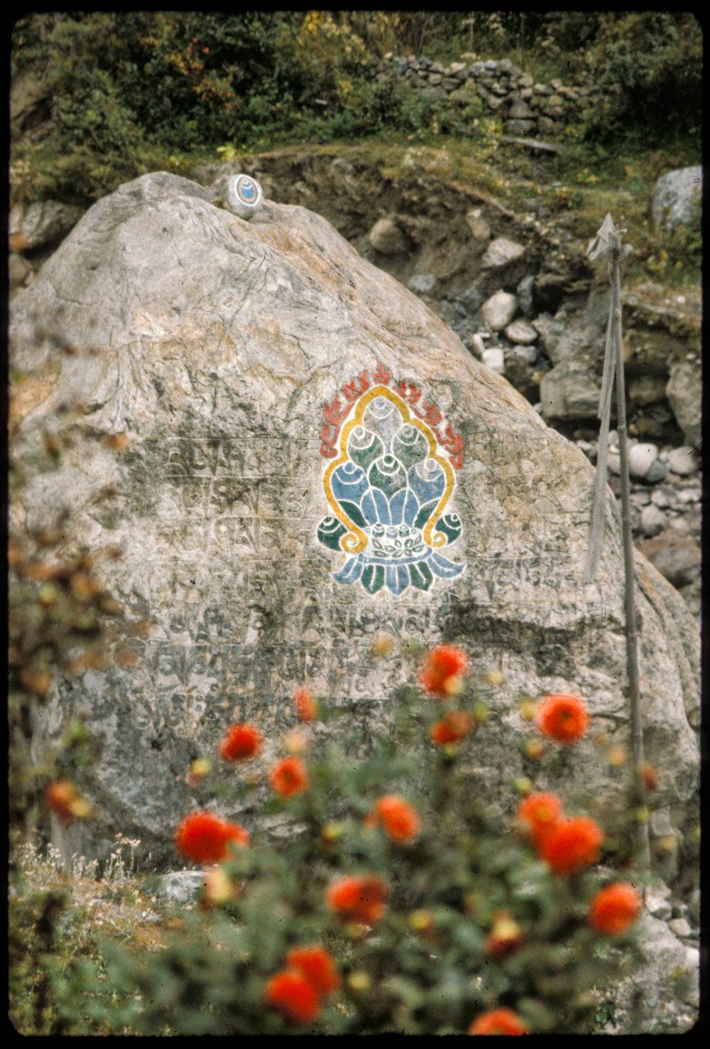Nepal_--55.jpg