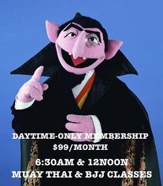 daytime_membership.jpg