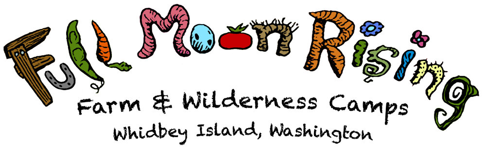 South Whidbey Summer Camps