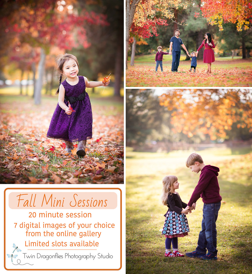 Fall add-4.jpg