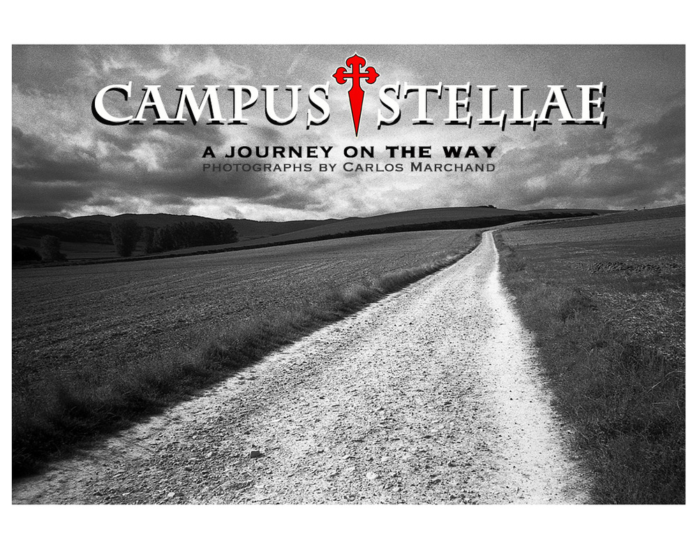 CAMPUS STELLAE Exhibit