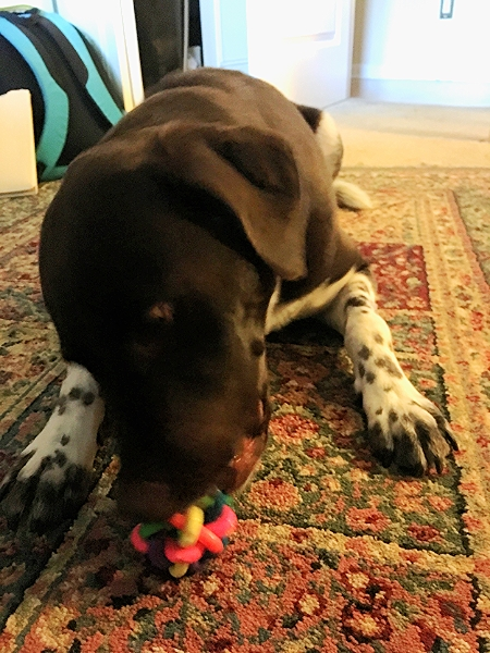 Destroying the ball...