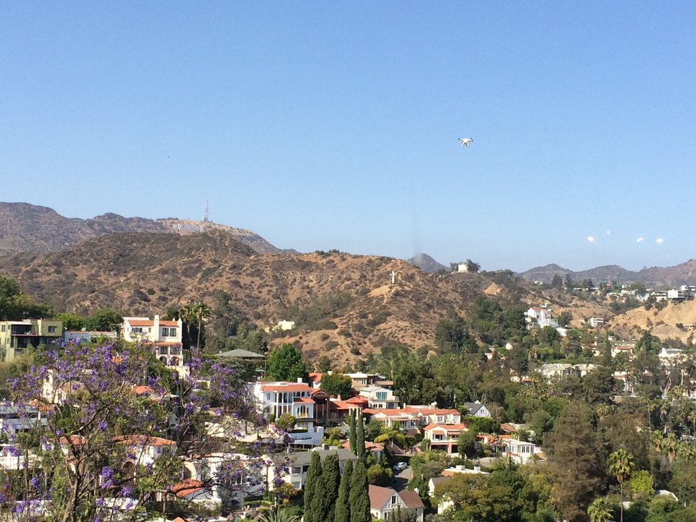Looking east towards the Hollywood Dell and Beachwood Canyon you can see our drone looking back at us.