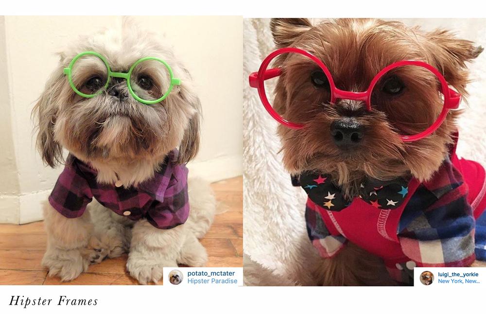 hipster frames.jpg